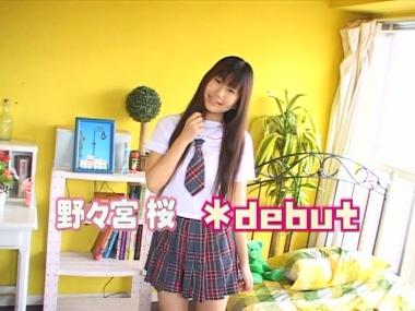 sakura_debut_00000.jpg