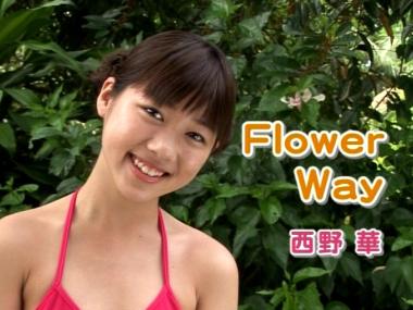 flower_way_00004.jpg
