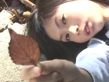 kiyose_cherrydrop_00004.jpg