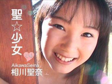 seina_seisyoujyo_00000.jpg
