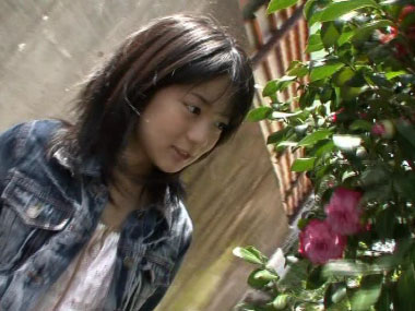 minami_window_00002.jpg