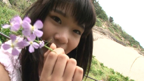 bokutai_hanan_00001.jpg