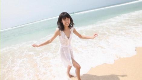 ogawa_my_figure_00015.jpg