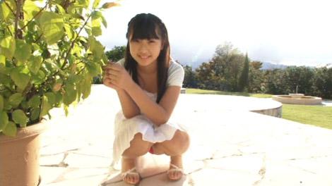 seino_sirayama_00061.jpg