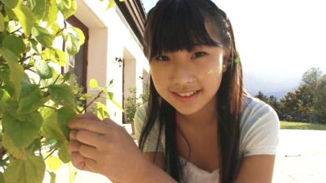 seino_sirayama_00062.jpg