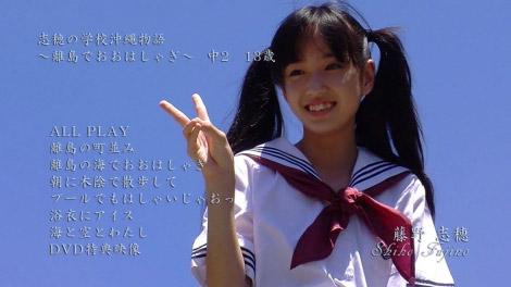 shiho_ritooohasyagi_00000.jpg