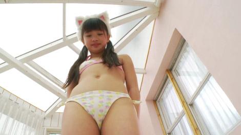 animal_rei_00004.jpg