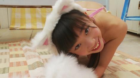 animal_rei_00009.jpg
