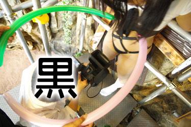 midori_bondage0032.jpg