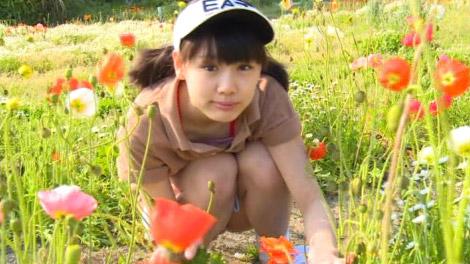 shibuyaku2sinjo_00013.jpg