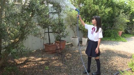 natushojo_ikeda_00001.jpg